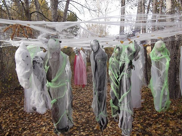1582 best Halloween images on Pinterest Halloween parties - haunted forest ideas for halloween