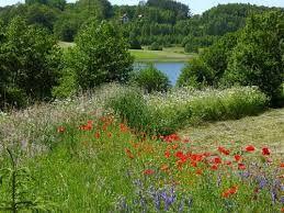 Bildresultat för ladne zdjecia krajobrazow