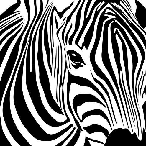 Zebra vector art on dragonartz.net