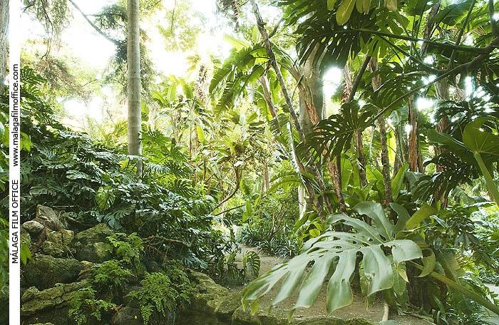 Subtropical Botanical Gardens (c) James Souza