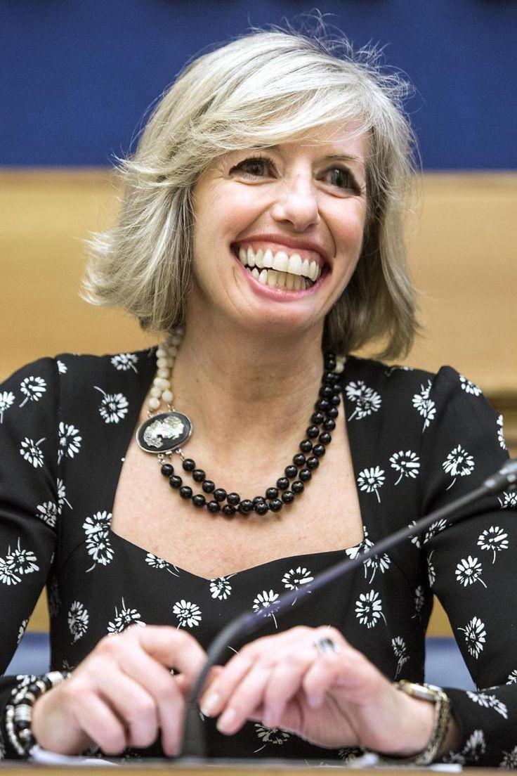 Vignettismo: Ministro ridens