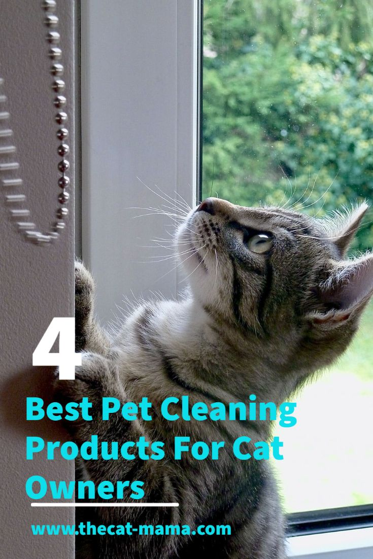 You Will Love These 4 Best Pet Cleaning Products For Cat Owners Cats Mama Cat Pets