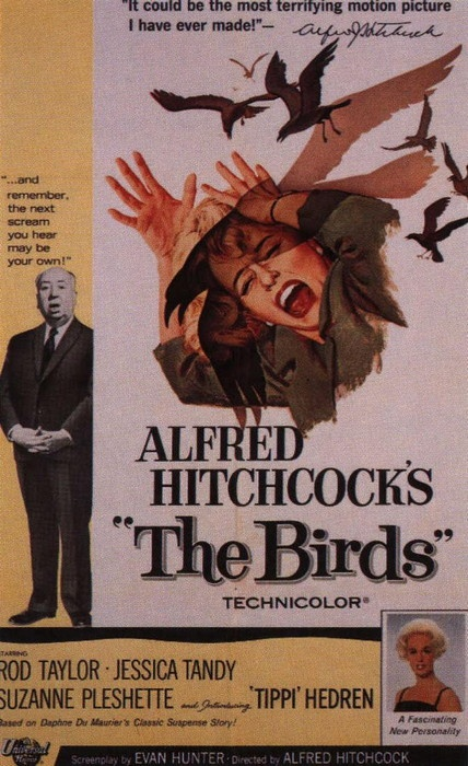 "vintage movie poster: "" The Birds"".  Black birds Still creap me out after watching this movie."