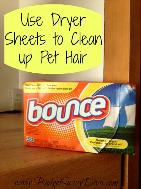 Use Dryer Sheets to Wipe up Pet Hair
