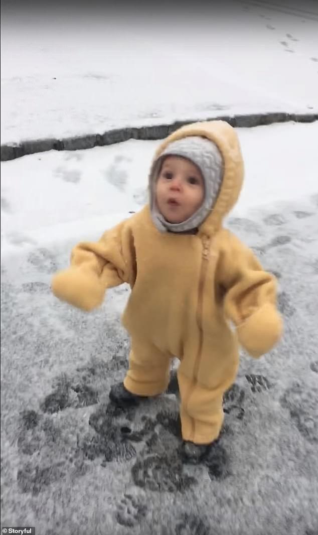 moment adorable little boy