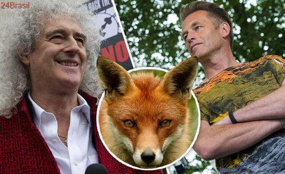 Ativistas e celebridades protestam contra caça de raposas na Inglaterra e no País de Gales