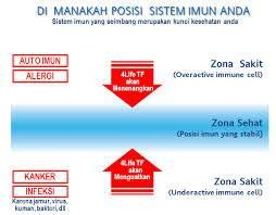 Jual Produk 4Life Transfer Factor  (Selling Products 4life Transfer Factor)…