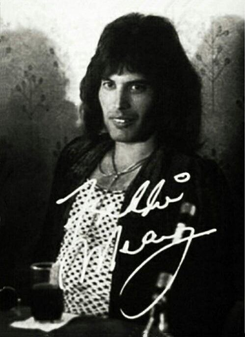 Freddie Mercury 1970s. The person that met him was lucky!