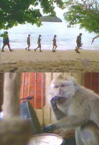 """LA SCIMMIA nell'episodio 5x07 (Assumptions) di """"Survivor: Thailand"""".  FINALMENTE QUALCUNO FA QUALCOSA IDOLA SUBITO"""