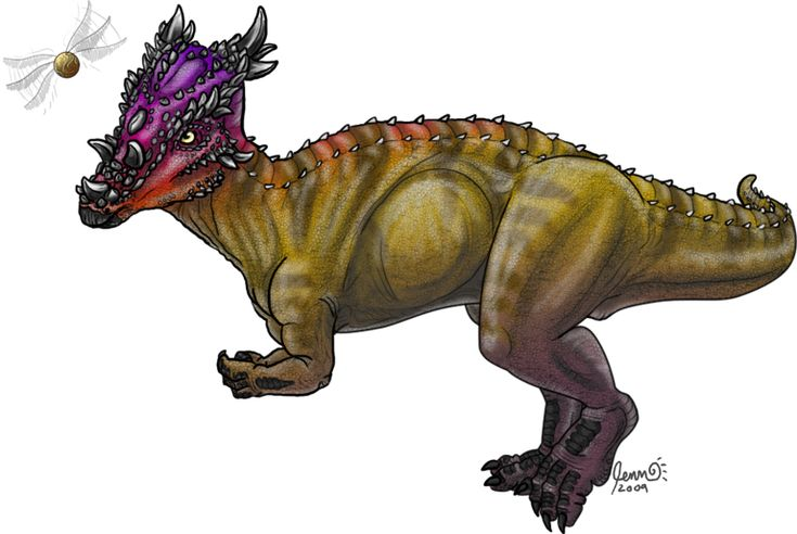 Dracorex hogwartsia by SageKorppi