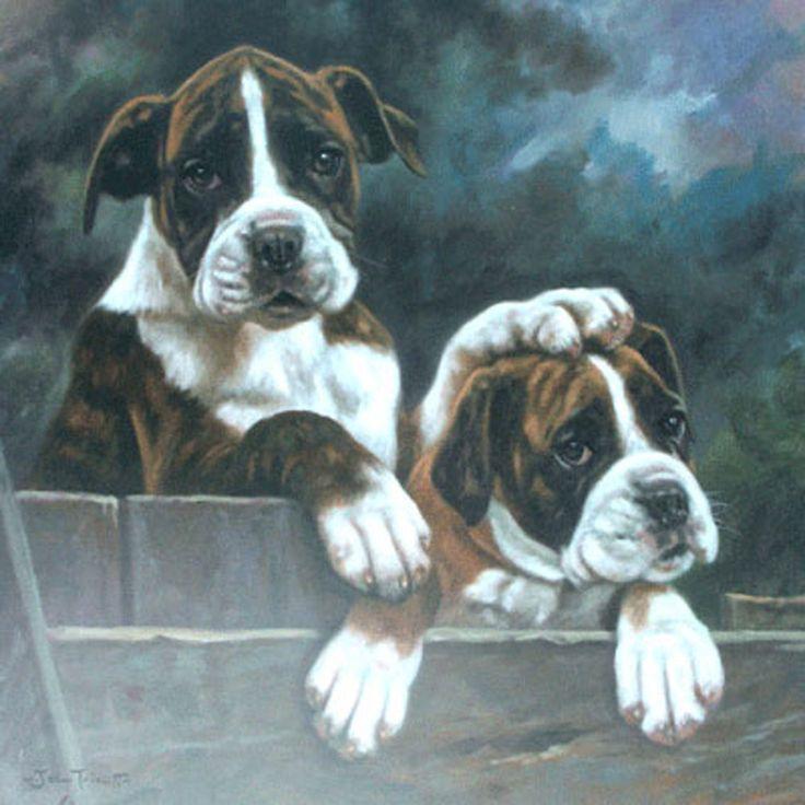 Sally Mitchell Fine Art Dog Prints Southpaw Boxer dogs