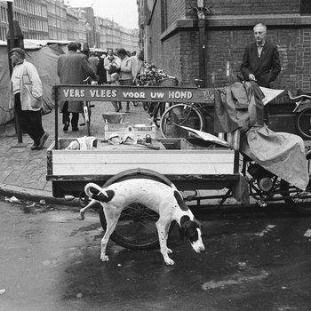 Hond plast tegen vleeskar op de Albert Cuypmarkt hoek Eerste Sweelinckstraat, Amsterdam 1962
