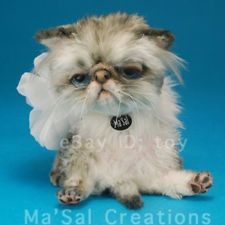 Ma'Sal Original / Special Dolly Kitten - Persian Silver/ Direct from the Artist