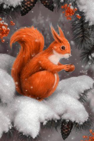 Белочка с орешком - анимация на телефон №1305358