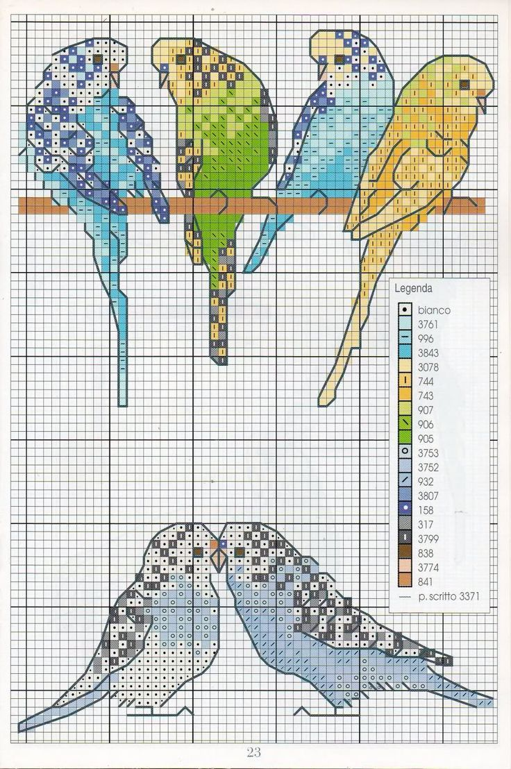 perruches pattern knitting - Google Search