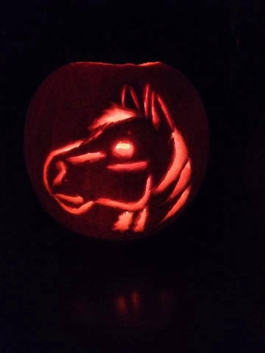 #pumpkin #carving #equestrian #horses #equestrianclearance See more here: www.facebook.com/equestrianclearance