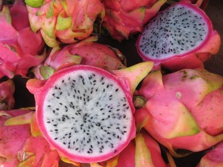 Pitaya (fruit du Dragon)
