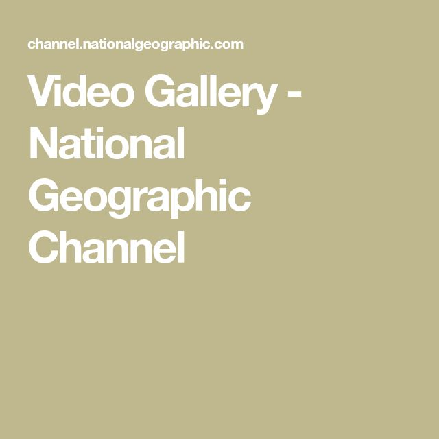 Video Gallery - National Geographic Channel