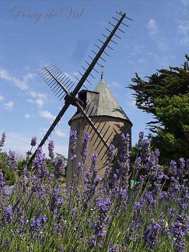 Douceur d'été : moulin de l'île de Ré | Charente-Maritime Tourisme #charentemaritime |#IledeRé | #moulin