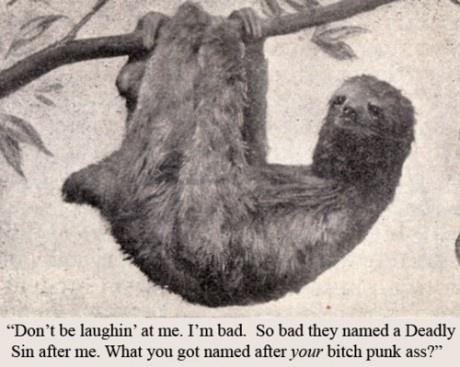 hahaha sloth joke