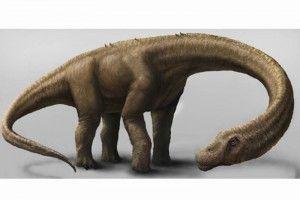 El Universal 140904 - Ciencia - Hallan dinosaurio siete veces mayor al tiranosaurio rex