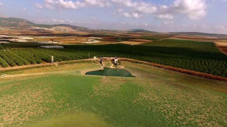 Video van de dag: het groene Galilea - Israel Today - Holland
