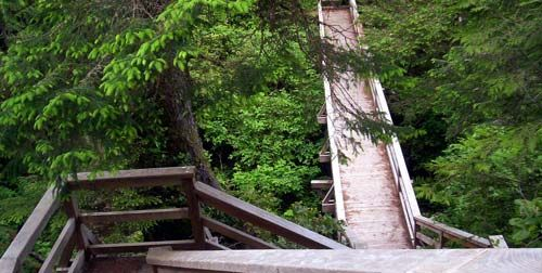 Wild Pacific Trail It is located in Ucluelet and consists of seven hiking trails that guide you along the cliffs and shore line of the West Cost. From it there, you have vantage points where you can see Barkley Sound, the Broken Group Islands to the east, and the might of the Pacific Ocean to the south and West. The trail takes one through some of the most beautiful and ancient cedar and spruce forests anywhere,