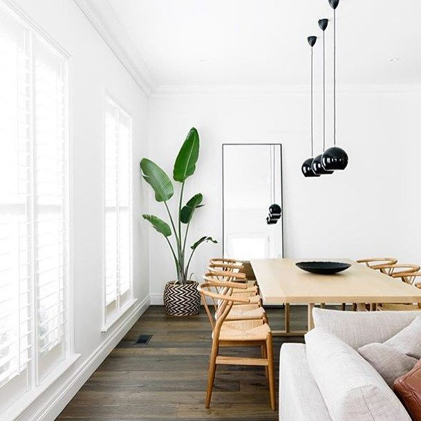There is so much to love about interior spaces but bright light (and white!) spaces are my favourite. Beautiful image by @biasoldesign #wishbonechair #blackpendant #indoorplant by neutralinstinct