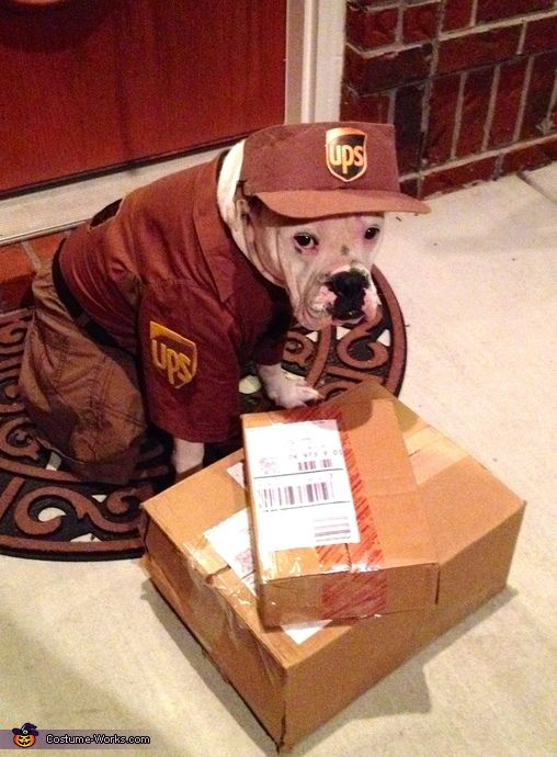 Ups Delivery Woman 1000+ ideas abo...