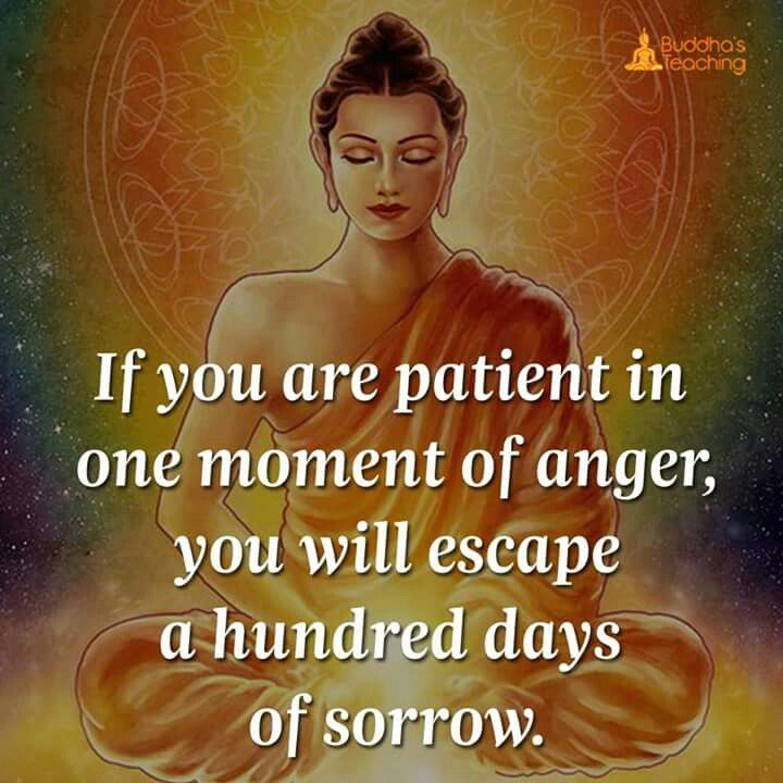 Quotes About Anger And Rage: Best 25+ Buddhist Sayings Ideas On Pinterest