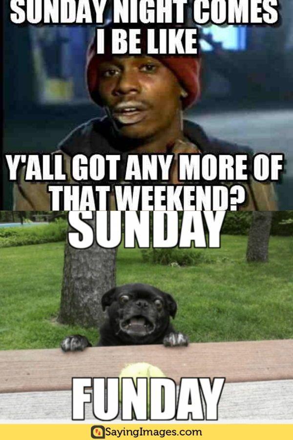 20 Sunday Memes That Ll Complete Your Weekend Sayingimages Com Sunday Meme Funny Memes Memes