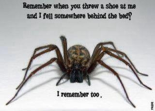 My worst fear...