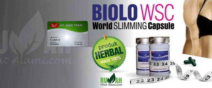 jual wsc biolo asli pelangsing herbal paling murah di rumah obat alami