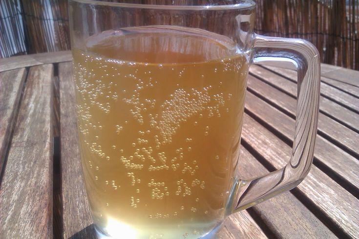 KEFIR DE AGUA: Kefir de zumo de manzana o sidra kefirada