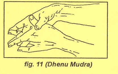 DHENU POSTURE:  Method: Crossing both hands, join the index finger to the middle finger, ring finger to the little fingers and keep thumb to the other thumb. Point the fingers downward. Close your eye and concentrate your conscious mind on the mudra. While in this position you will feel your mental problems going in to the earth through your fingers.  Benefits: By practicing 1 to 5 minutes for 7 days, it is helpful in curing depression, mental disturbance, despair, dissension and stress.