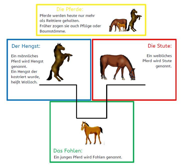 krabbelwiese: Tiere des Bauernhofs
