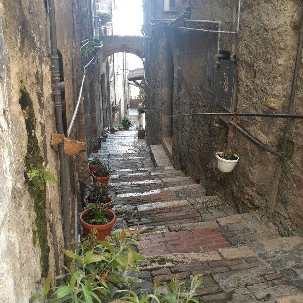 Anagni Street #amazingciociaria #ridieassapori #TBDI2015 #lazioisme