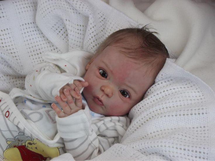 Alexandra's Babies Reborn Baby Boy Doll Livia Gudrun Legler Sold Out Ed | eBay
