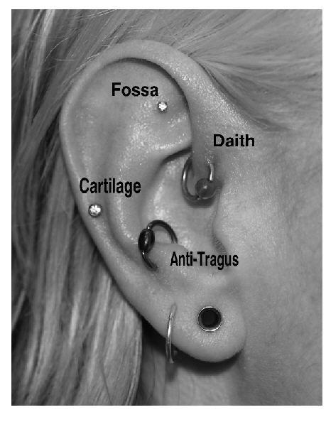 Ear-Piercings