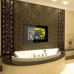Bathroom Televisions