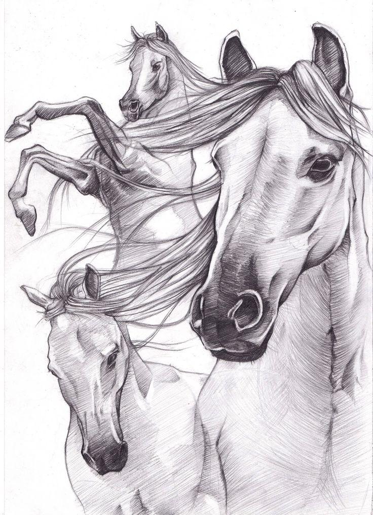 horse drawings | Sketch_works: various drawings