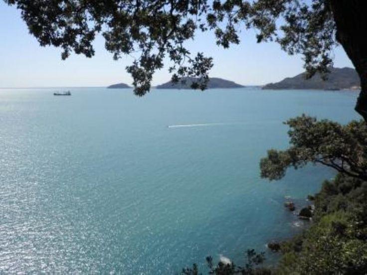 Affitto casa Lerici - Vista sul mare