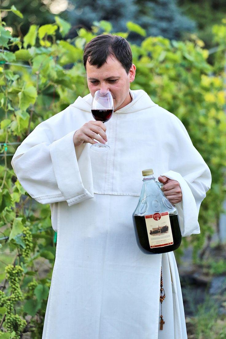 Olaf Kuziemka z powinowaci.pl zaprasza na pierwszą z nowego cyklu wyprawę do Sandomierza, gdzie Ojciec M stara się odbudować winnicę, której początki datuje się wraz z przybyciem dominikanów w 1226r.