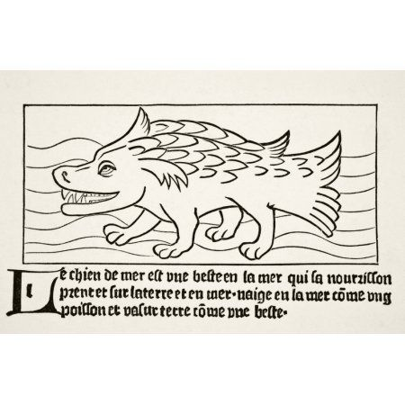 The Sea-Dog After A Wood Engraving In Dyalogue Des Creatures Published 1482 From Science And Literature In The Middle Ages By Paul Lacroix Published London 1878 Canvas Art - Ken Welsh Design Pics (36