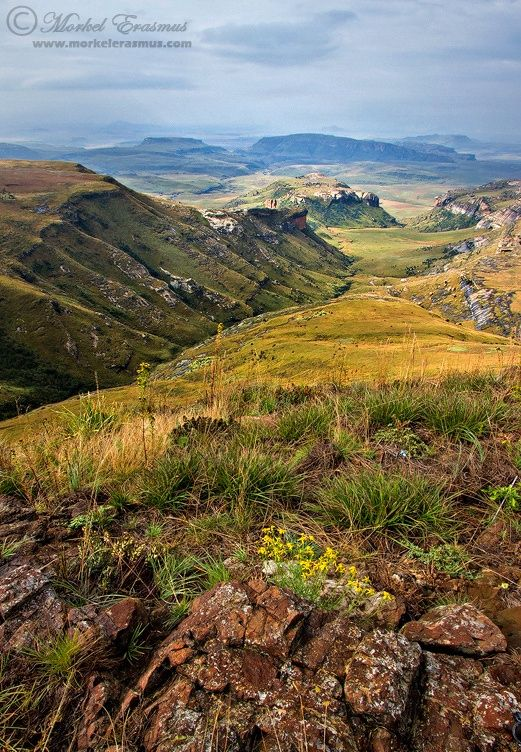The View - A gorgeous vista overlooking the Maluti Mountains (part of the greater Drakensberg range) in the Golden Gate Highlands National Park, South Africa