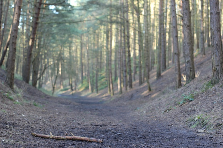 Irchester Country Park Canon 600D