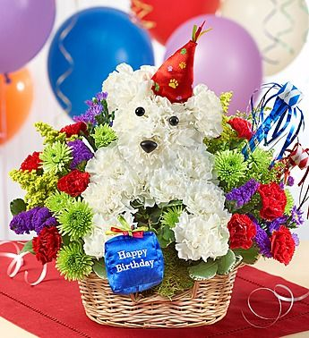 1800flowers a dog able