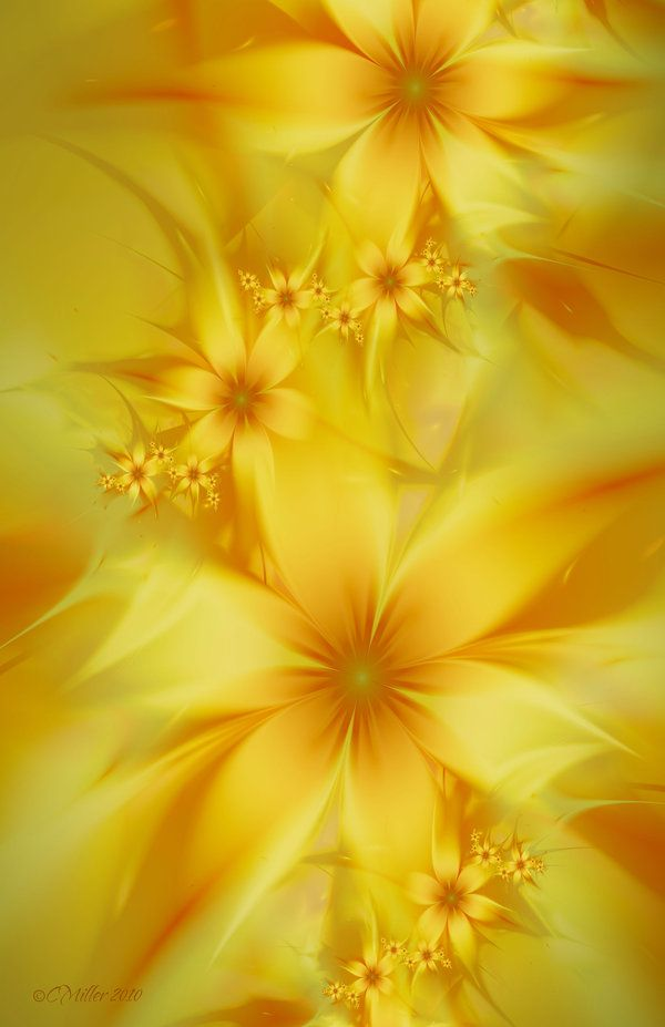 """""""Golden Summer Lilies"""" by C. Miller a.k.a. Shadowed Dancer, 2010. [Fractal Art]"""