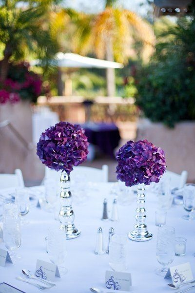 Hydrangea Flower Arrangements (only in white hydrangeas) Wedding Flowers Photos on WeddingWire