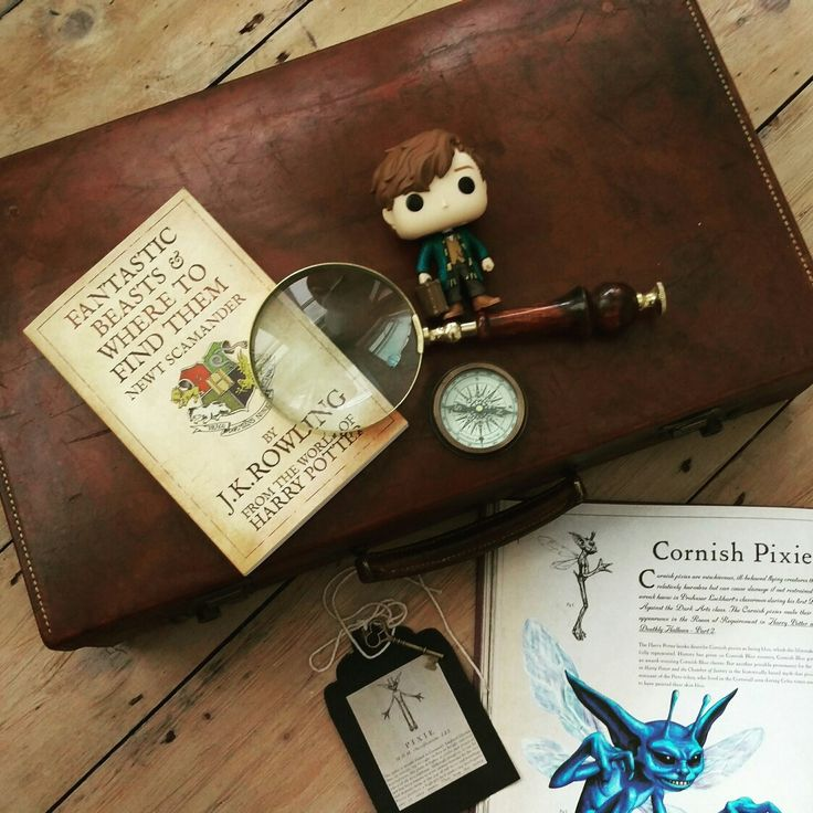 Newt Scamander is all packed and ready for New York